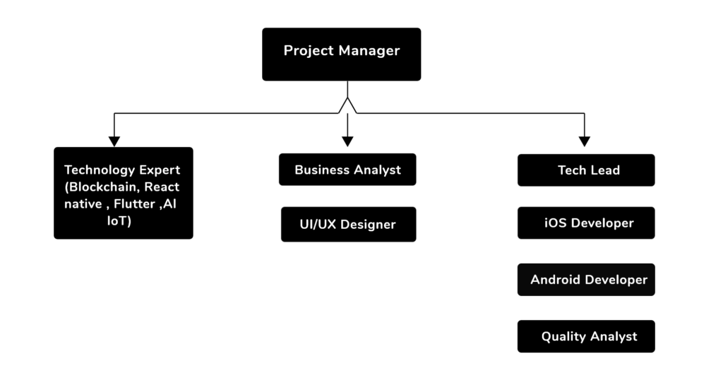 mobile app development company structure